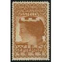 Wien 1911 Internationale Postwertzeichen Ausstellung (braun)