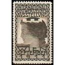 Wien 1911 Internationale Postwertzeichen Ausstellung (grau)