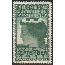 Wien 1911 Internationale Postwertzeichen Ausstellung (grün)