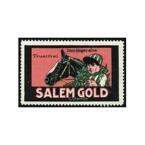 http://www.poster-stamps.de/1486-1578-thickbox/salem-gold-cigarette-dem-sieger-eine-wk-04.jpg