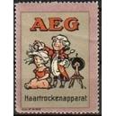 AEG Haartrockenapparat (Var. A klein)
