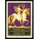 Bamberg 1914 Fränkisches Sängerbundfest (violett)