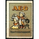 AEG Haartrockenapparat (grosses Format)