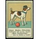 """Scholz' Künstler-Bilderbücher ... """"Mein Tierbilderbuch"""""""