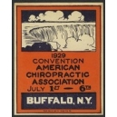 Buffalo 1929 Convention American Chiropractic Association
