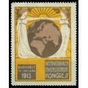 Budapest 1913 Fraunenstimmrechts Kongress (gelblich)
