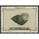 Nestlé Serie V os 1 - 12 Coquillages (Muscheln / Mussels)