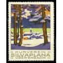Silvaplana Ober-Engadin, Kurverein