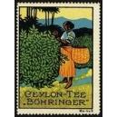 Böhringer Ceylon-Tee Marke 09