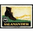 Salamander (WK 12)