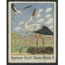 Heymann Blochs Storke-Billede 4