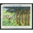 Oma Plantemargarine ... No. 01 Kokosplantage