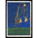 Ludwigshafen Parkfest 1913 (WK 13 - Feuerwerk)