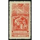 Troyes 1907 Fête de la Mutualité ... (WK 01)