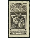 Troyes 1907 Fête de la Mutualité ... (WK 02)
