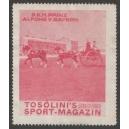 Tosolini's Sport-Magazin (WK 08 - rot) Alfons von Bayern