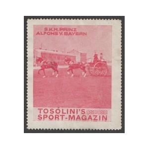 http://www.poster-stamps.de/3955-4266-thickbox/tosolini-s-sport-magazin-wk-08-rot-alfons-von-bayern.jpg