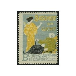 http://www.poster-stamps.de/4072-4390-thickbox/salzschlirf-heilt-gicht-.jpg