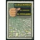 Bergenholz Centralpavillonen besorger Al Reklame