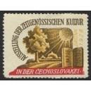 Brünn 1928 Ausstellung Zeitgenossische Kultur ... (02)