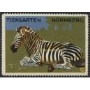 Nürnberg Tiergarten (04 - Zebra - Zèbre)