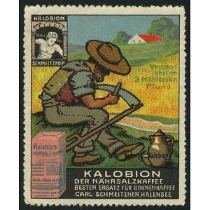 http://www.poster-stamps.de/5078-5872-thickbox/kalobin-der-nahrsalzkaffee-001.jpg