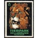 München Tierpark Hellabrunn (Löwe)