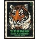 München Tierpark Hellabrunn (Tiger)