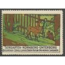 Nürnberg Tiergarten Unterbürg Edelhirsche