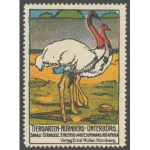 http://www.poster-stamps.de/659-5899-thickbox/nurnberg-tiergarten-unterburg-somali-strausse.jpg