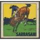Sarrasani (WK 22 - Zureiter)