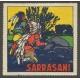 Sarrasani (WK 23 - 2 Indianer auf Lauer)